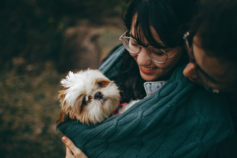 couple with a dog best relationship partners